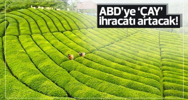 ABD'ye çay ihracatı artacak...