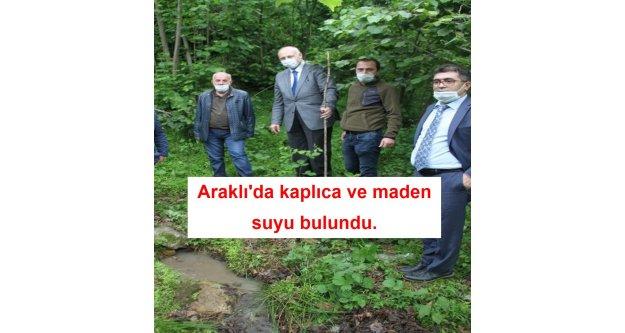 Araklı'da fındıklık içerisinde kaplıca ve maden suyu bulundu.