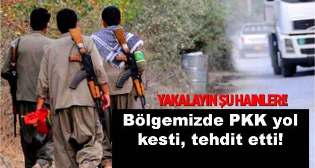 Bölgemizde PKK yol kesti, tehdit etti!