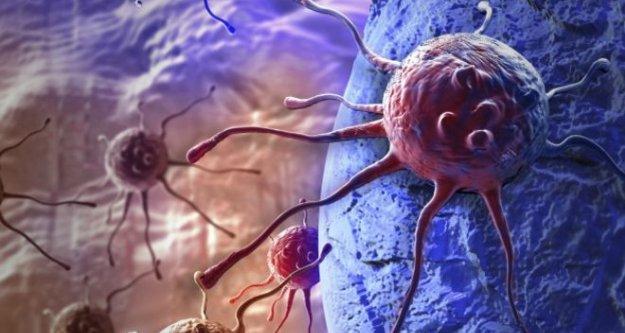 Kanser 'şans eseri' oluşmuyor