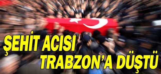 Şehit Acısı Trabzon Araklı#039;ya düştü!