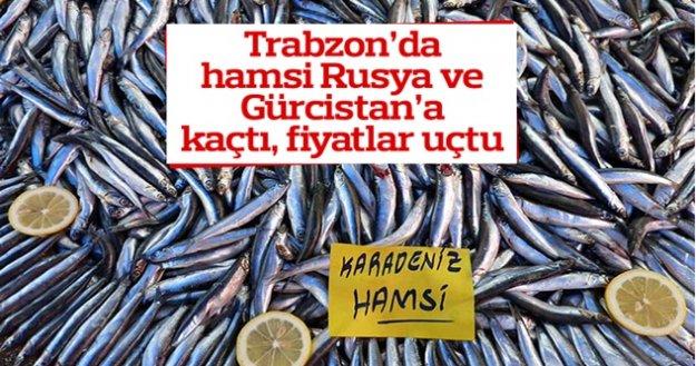 Tarbzon Hamsi Rusya ve Gürcistan'a Kaçtı, Fiyatlar Uçtu