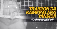 Trabzon'da kovanlara saldıran ayı kameralara yansıdı