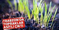 Trabzon'da topraklar asitli çıktı