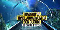 Trabzon'da Tünel Akvaryum'da son durum! Ne zaman bitecek?