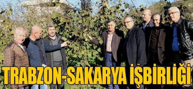 Trabzon ve Sakarya İşbirliği...