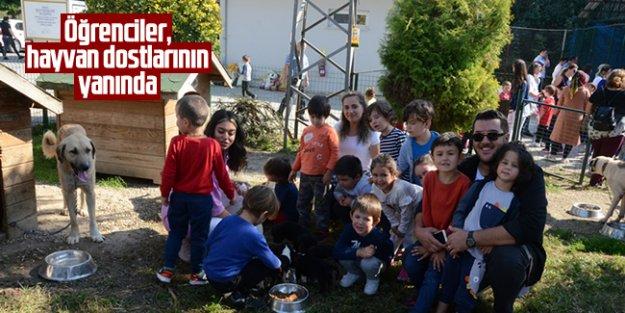 Trabzonda hayvanlar günü etkinliği düzenlendi