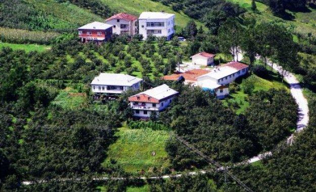 Araklı köprüüstü köyü şirin ayven
